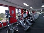 Fernwood Fitness Blackburn South Ladies Gym CardioAt Fernwood Mitcham, variety is