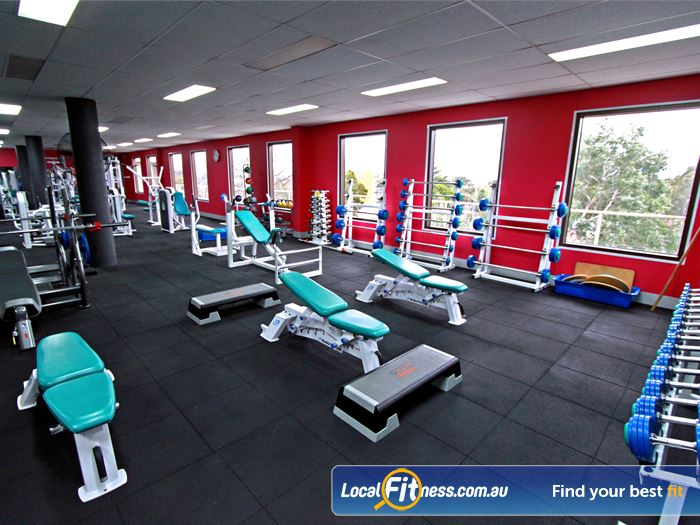 Fernwood Fitness Gym Blackburn South  | Not all women's strength training is equal. Equipment