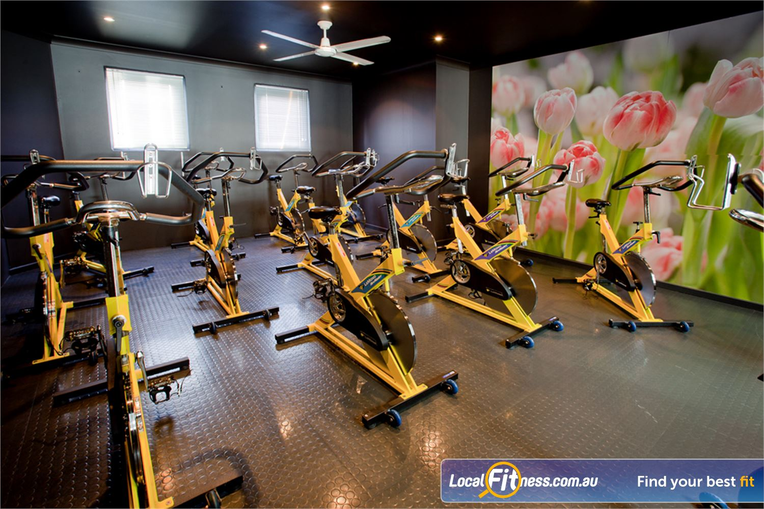 Fernwood Fitness Yarraville Enjoy the dynamic  environment with Yarraville spin cycle classes.