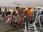 Fitness First Platinum Woolloomooloo Gym Fitness Our free-weights area is fully