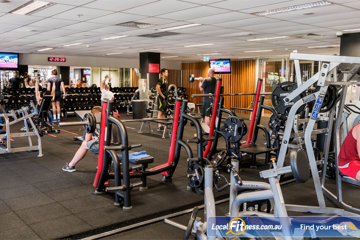 Fitness First Platinum Near Woolloomooloo Our free-weights area is fully equipped with dumbbells barbells and more.