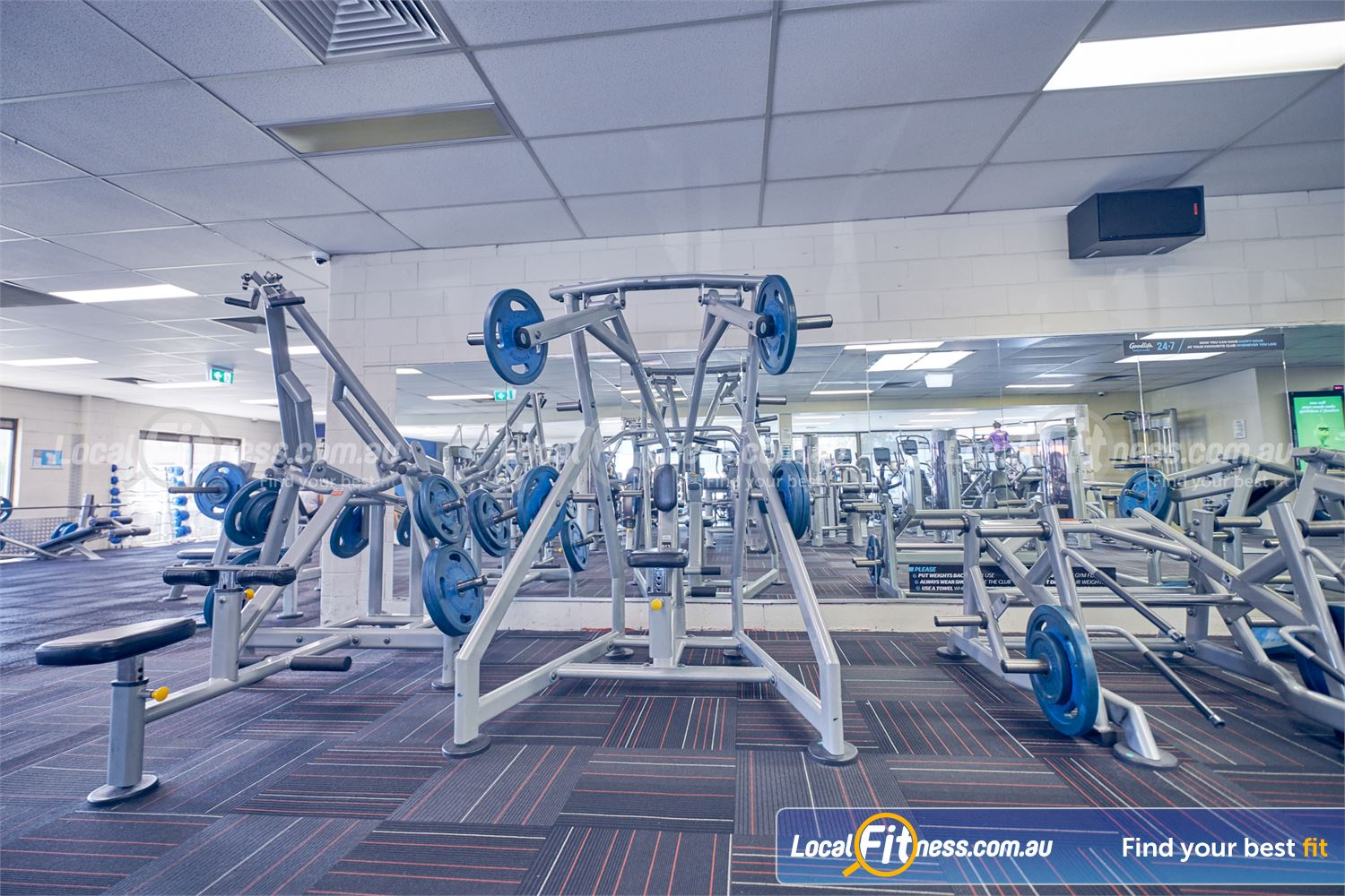Goodlife Health Clubs Dingley Village Our Dingley gym includes a fully equipped free-weights area.
