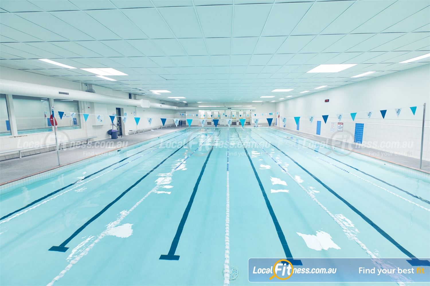 Goodlife Health Clubs Dingley Village Multi-lane indoor Dingley swimming pool perfect for lap lane swimming.