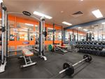 Plus Fitness 24/7  Monterey Gym Fitness Our gym in fully equipped for