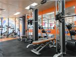 Plus Fitness 24/7  Ramsgate Beach Gym Fitness The heavy duty power rack with