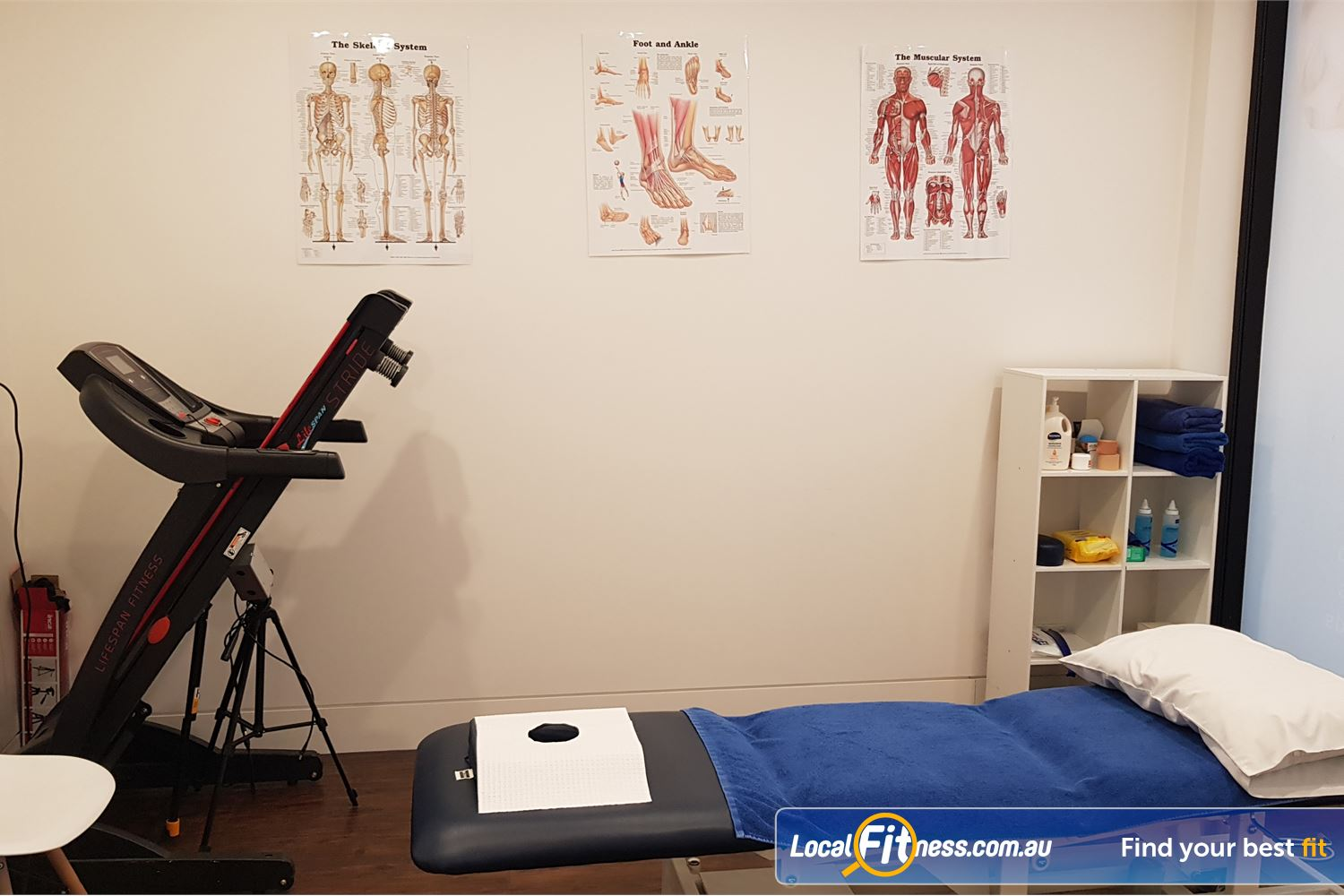 Activ Therapy Clemton Park Campsie Our Clemton Park Physiotherapist can help seek the source of your pain.<br />