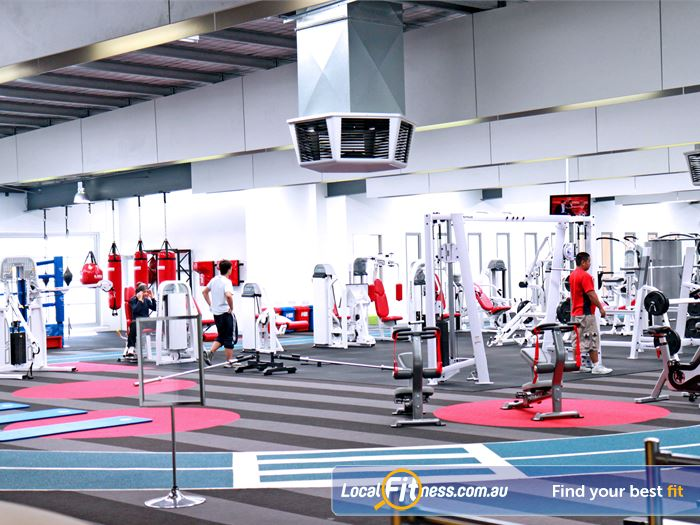 Genesis Fitness Clubs Gym Caroline Springs  | Large open plan Maidstone gym with natural lighting.