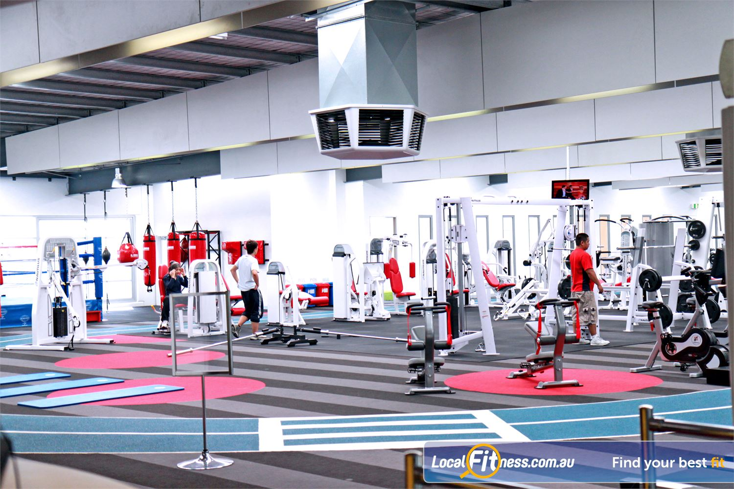 Genesis Fitness Clubs Maidstone Large open plan Maidstone gym with natural lighting.