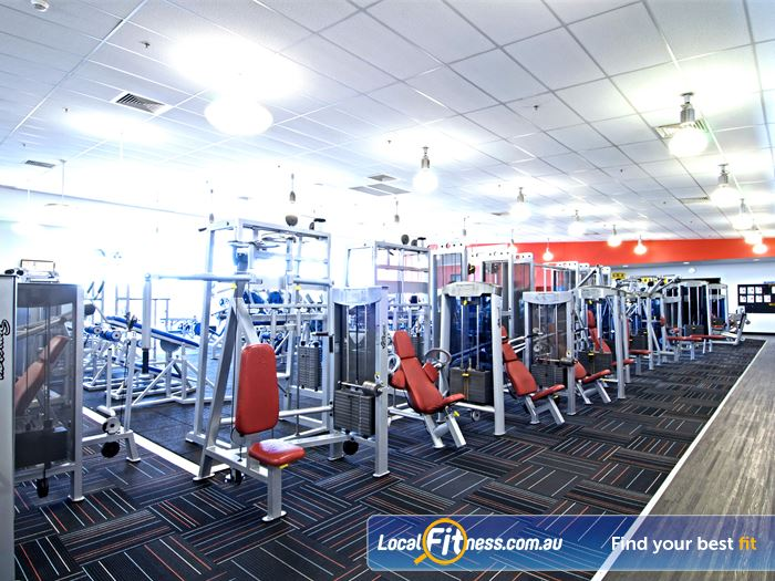 Goodlife Health Clubs 24 Hour Gym Brisbane  | The fully equipped Chermside free-weights gym area with