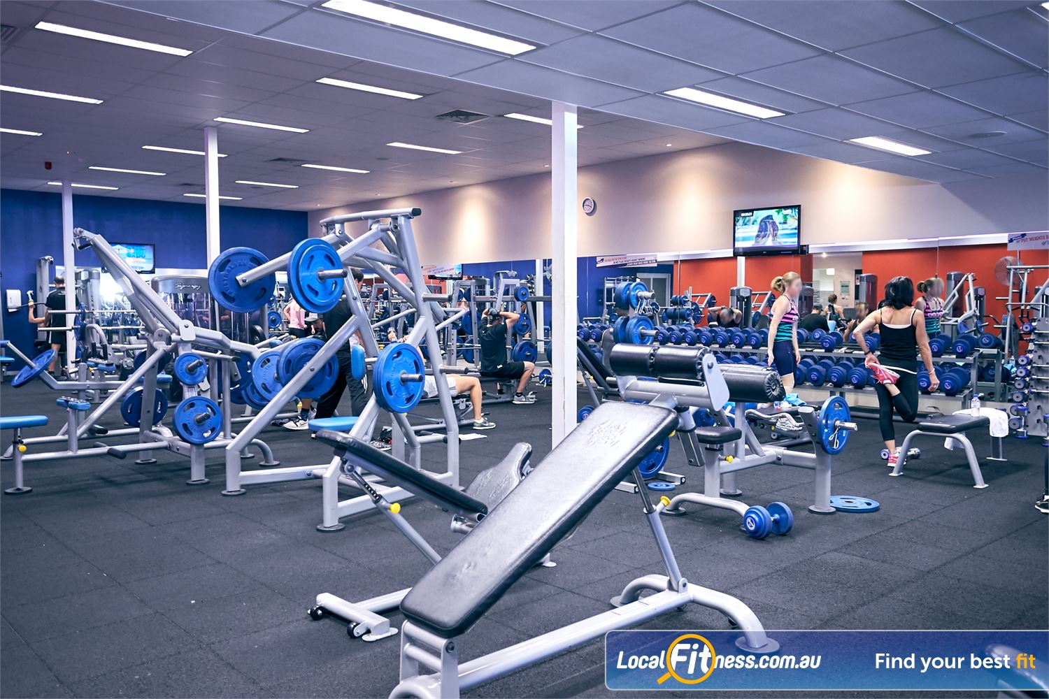 Goodlife Health Clubs Cross Roads Westbourne Park The fully equipped Westbourne Park free-weights gym area.