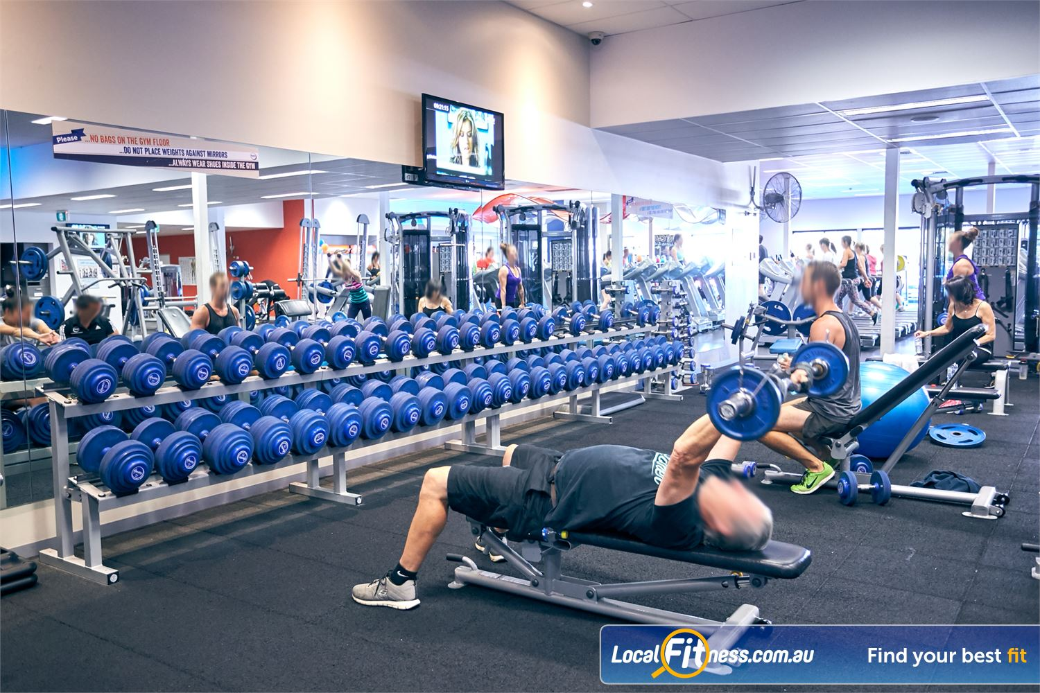 Goodlife Health Clubs Cross Roads Near Hawthorn Our Cross Roads gym includes a comprehensive free-weights area.