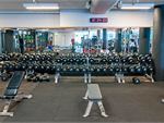 Fitness First Platinum Dee Why Gym Fitness Our free-weights area is fully