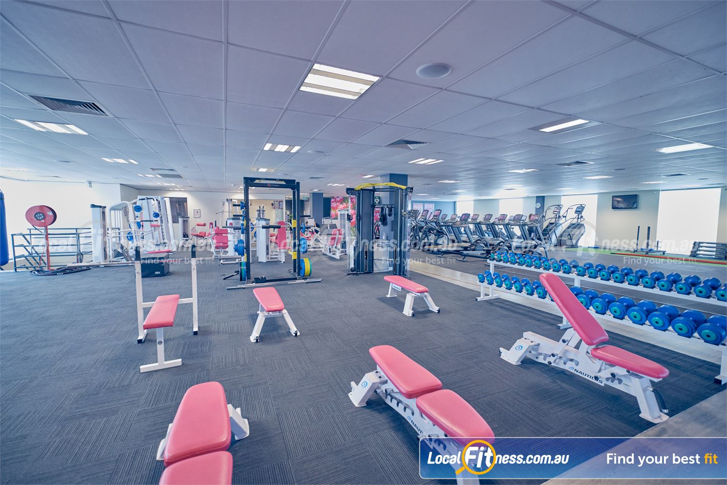 Fernwood Fitness Near Ravenhall The fully equipped free-weights area with dumbbells, barbells, benches and more.