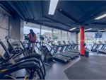 Our cardio area includes cross trainers, steppers, treadmills