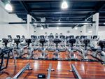 Goodlife Health Clubs Mount Evelyn Gym Fitness Rows of treadmills,
