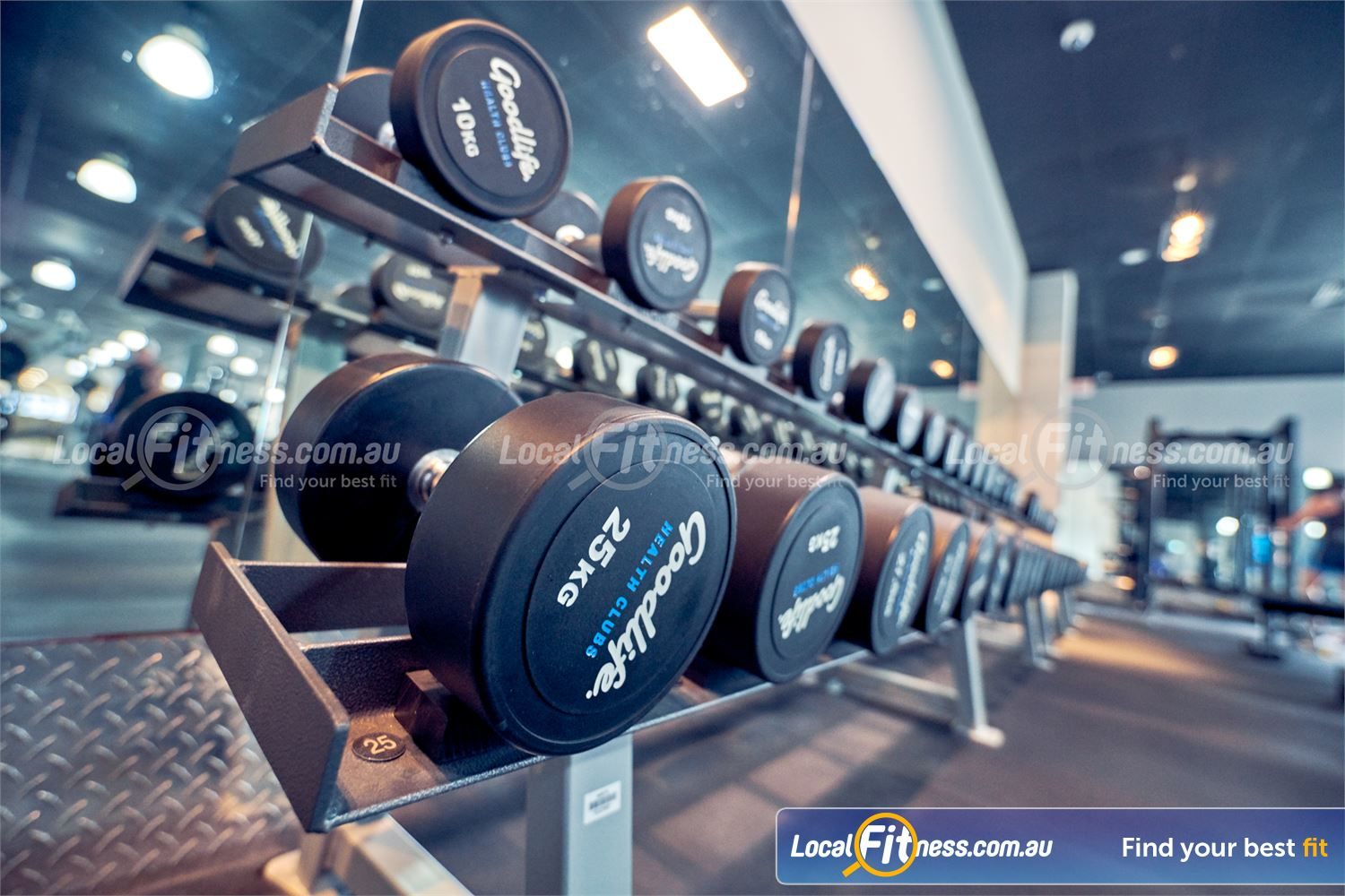 Goodlife Health Clubs Knox City Near Scoresby Full range of dumbbells catering for beginners to advanced.
