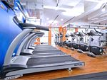 Plus Fitness 24/7 Strawberry Hills Gym Fitness Rows of cardio machines