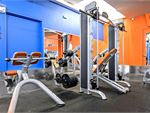 Plus Fitness 24/7 Darlinghurst Gym Fitness Full squat rack, smith machine,