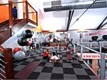 World Gym Rundle Mall Gym Fitness Fully equipped with fitballs,