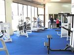 Lifestyle Fitness Mulgrave Gym  The light-filled Wheelers Hill gym.