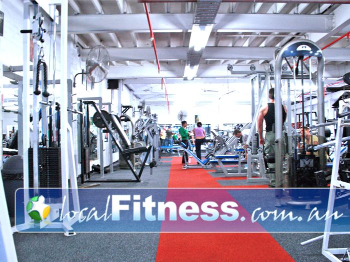 Muscle & Body Shape Gym St Kilda Gym  Musle and Body Shape Prahran's