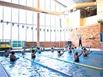 Genesis Fitness Clubs Dandenong Gym Swimming Get into our range of aqua