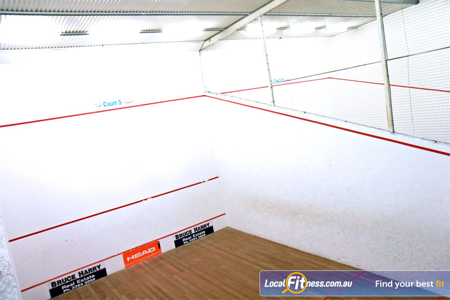 Goodlife Health Clubs Near Wellers Hill Dedicated Holland Park squash courts at Goodlife Holland Park.