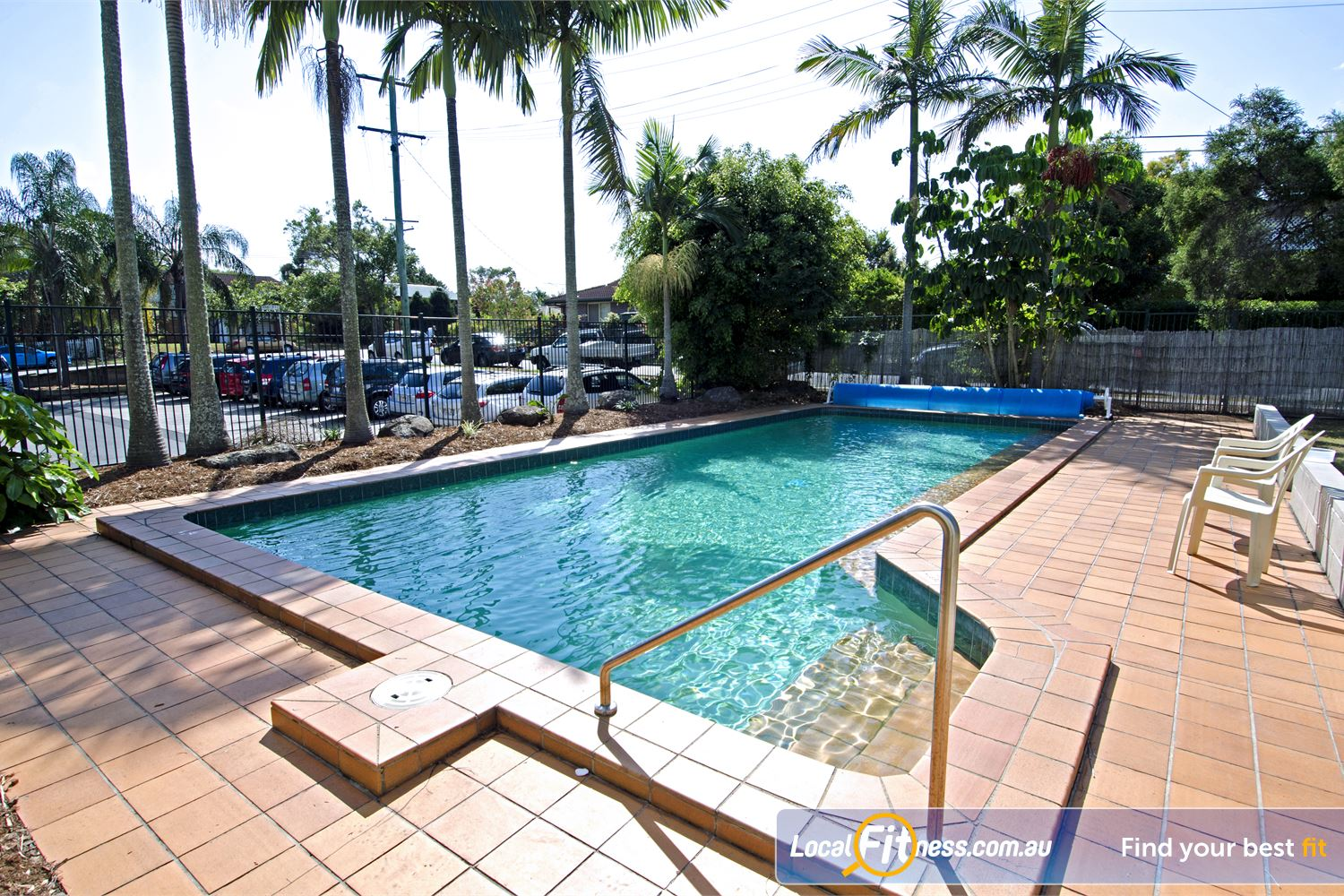 Goodlife Health Clubs Graceville The Graceville swimming area provides a tropical palm retreat.
