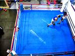 Mischa's Boxing Central Footscray Gym Boxing Features full size boxing ring.