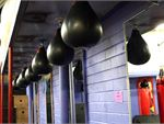 FITafex Gymnasium Strathmore Gym Boxing The famous speedball set up in