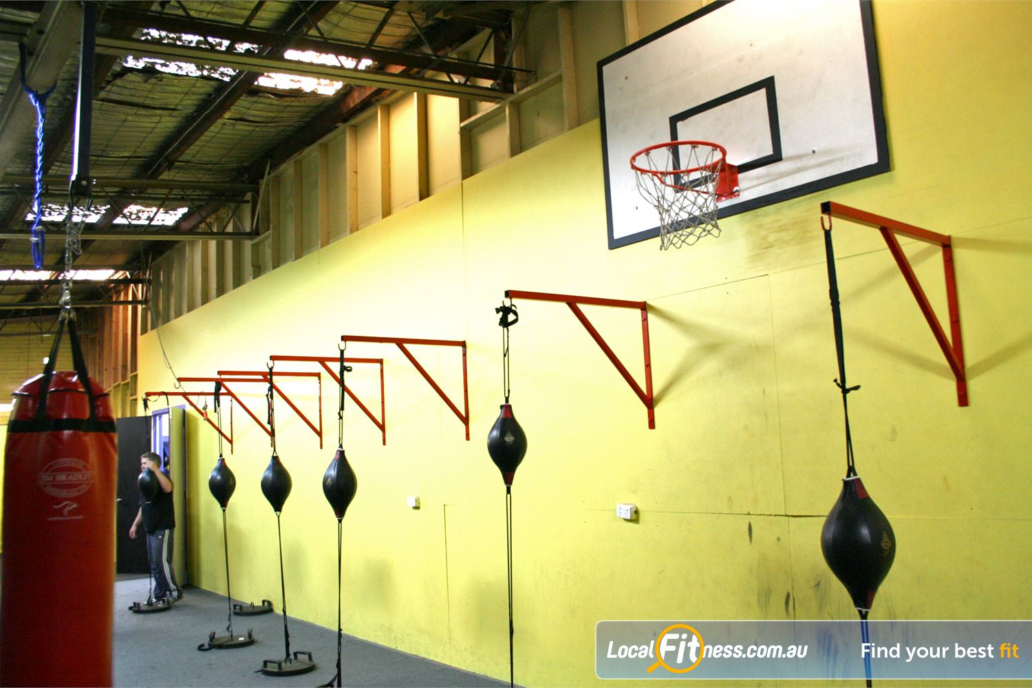 FITafex Gymnasium Essendon Multiple floor to ceiling balls to improve your co-ordination.