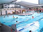 Ascot Vale Leisure Centre Ascot Vale Gym Swimming Our Ascot Vale swimming pool