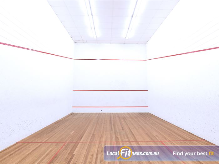 Goodlife Health Clubs Bayswater Gym Sports Racquet sports include squash,