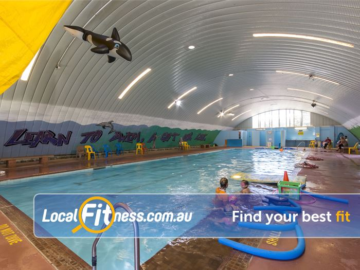 Wellington Point Swimming Pools Free Swimming Pool Passes Swimming Pool Discounts