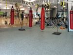Our Devonport boxing and functional training studio.