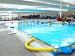 Whitlam Leisure Centre Warwick Farm Gym Swimming Our indoor Liverpool swimming