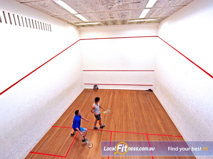 Macquarie University Sport & Aquatic Centre Marsfield Gym Sports Multiple Macquarie Park squash