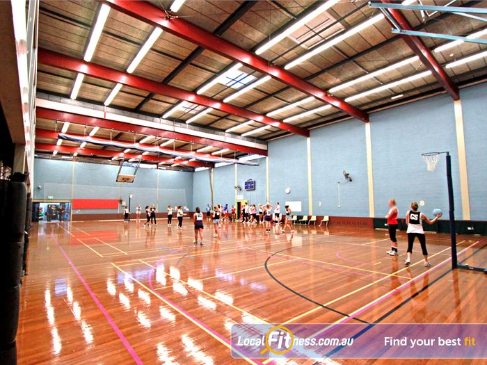 Macquarie University Sport Aquatic Centre Netball Court Macquarie Park Macquarie University