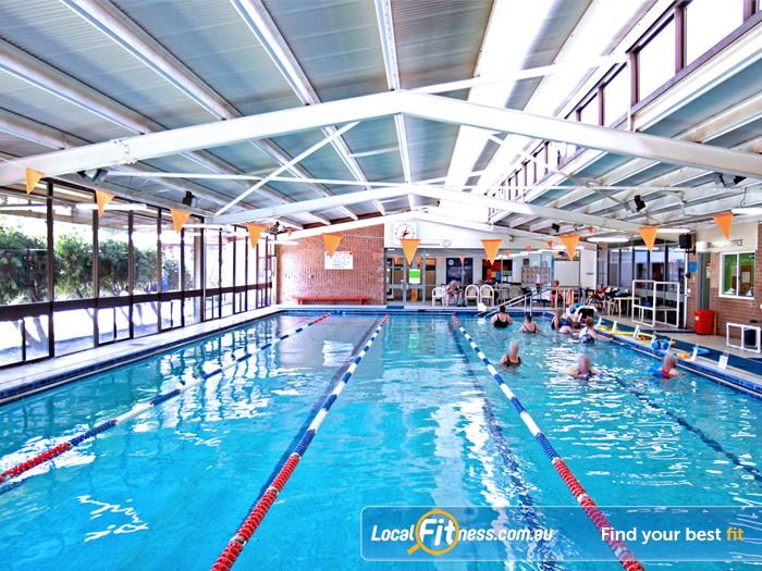 Goodlife Health Clubs Swimming Pool Hyde Park    The indoor 25 m Royal Park swimming pool.