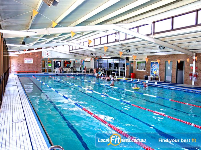 Goodlife Health Clubs Swimming Pool Hyde Park    Enjoy lap swimmingin the heated Royal Park swimming