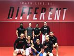 UFC Gym Blacktown Gym Sports Welcome to the grappling arena