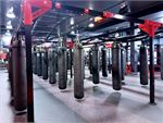 Improve your striking in the boxing arena at