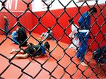 UFC Gym Marayong Gym Sports A full range of combat sports