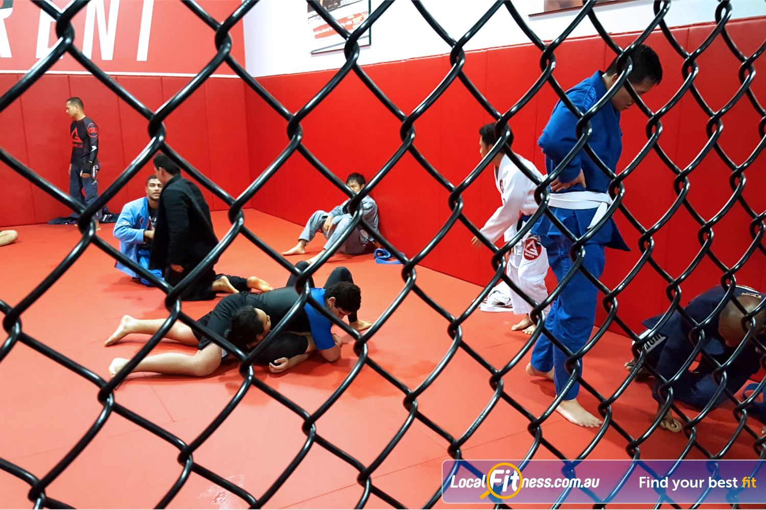 UFC Gym Near Marayong A full range of combat sports inc. boxing, kickboxing, wrestling, bjj and more.