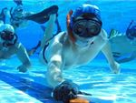 Palm Beach Aquatic Centre Tugun Heights Gym Sports Underwater Hockey is a great way