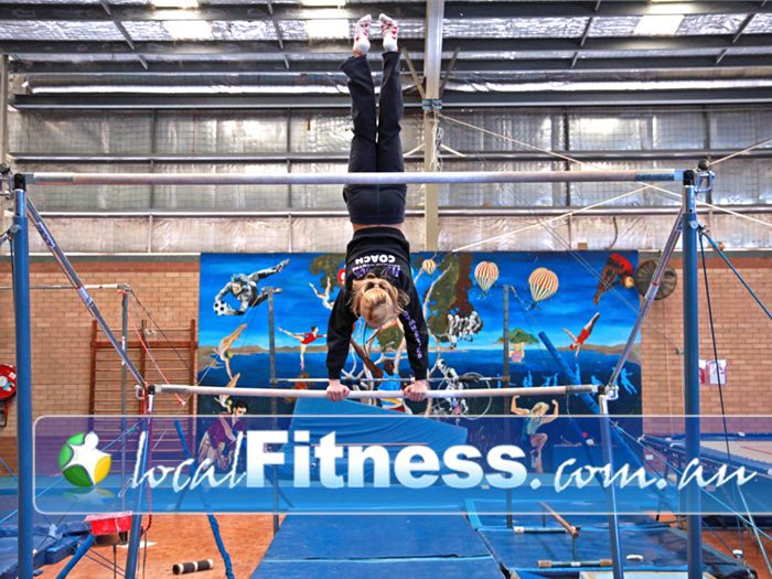 Five Dock Leisure Centre Russell Lea Gym Sports Five Dock gymnastics programs
