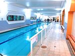 Body Express Gym North Bondi Gym Swimming Heated Bondi swimming pool